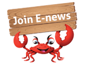 Join e-News